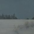 winterreise x
