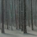 Winterreise xx